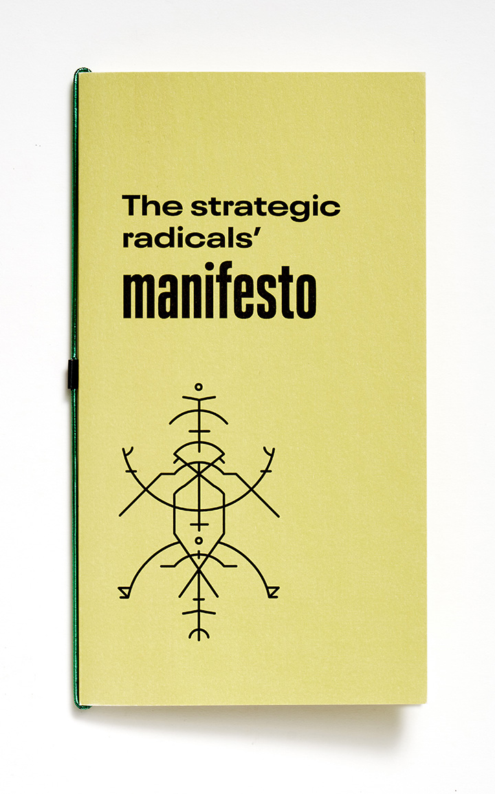 The strategic radicals' manifesto